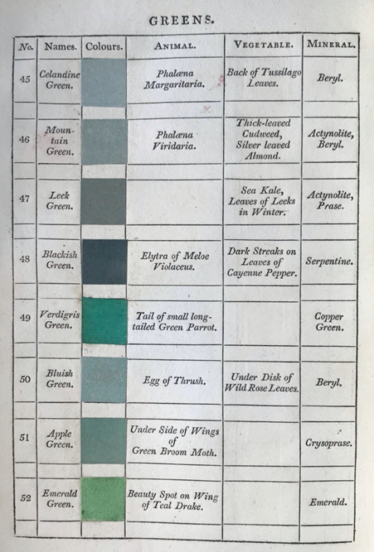 Page with green colour swatches with labels