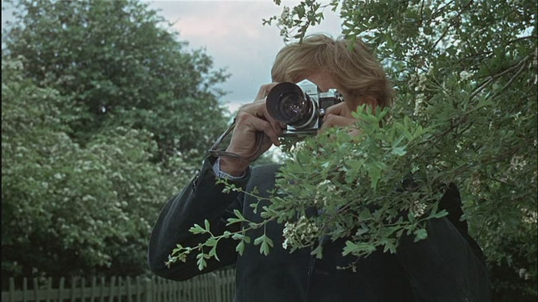 Man partially obscured by bush taking a photograph