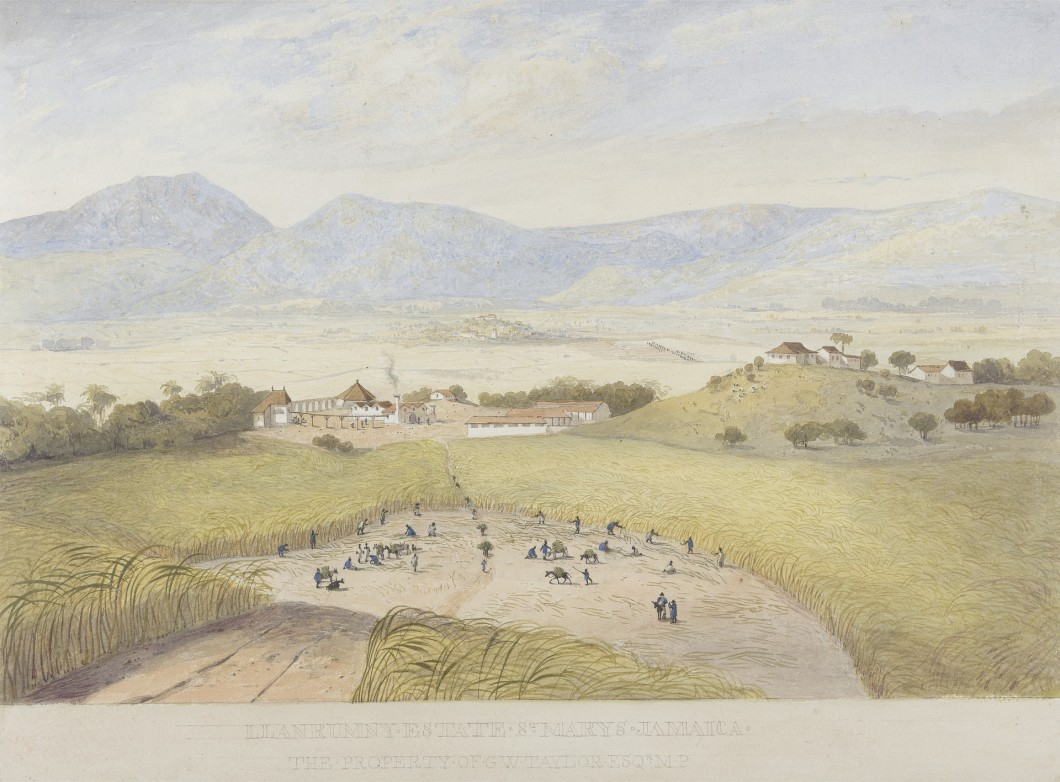 ca. 1820-21, watercolor on moderately thick, slightly textured, cream wove paper, B1977.14.1960